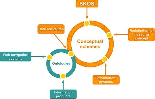 knowledge orgnization